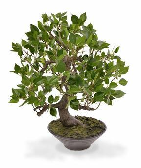 Mesterséges bonsai Fikus Wiandi 45 cm