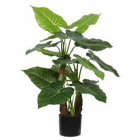 Mesterséges fa Taro Araceae 80 cm