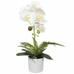 Mesterséges fehér orchidea, páfrány 37 cm