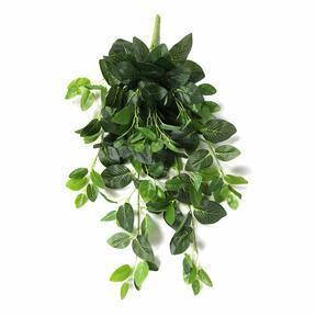 Mesterséges inda Fitónia zöld 80 cm