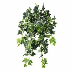 Mesterséges inda Ivy fehér-zöld 80 cm