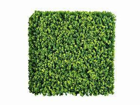 Mesterséges lombhullató panel Buxus - 50x50 cm