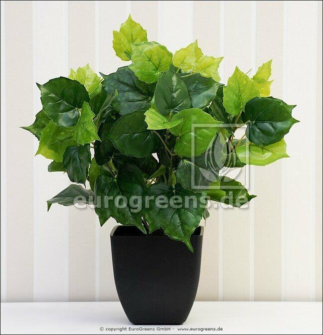 Mesterséges növény Cisus 40 cm