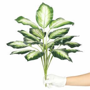 Mesterséges növény Dífenbachia fehér 50 cm