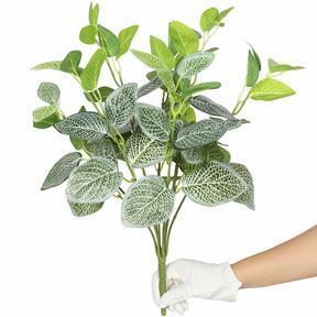 Mesterséges növény Fitónia fehér 45 cm