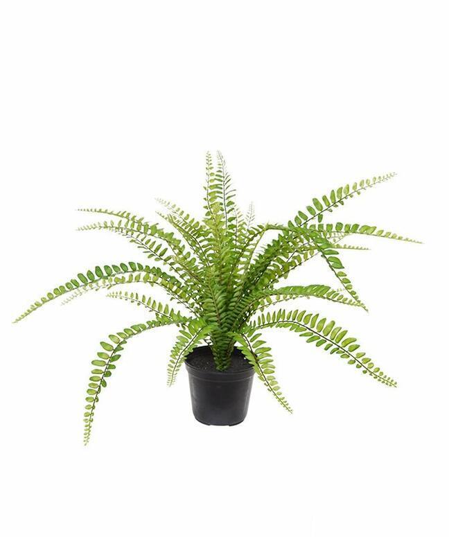 Mesterséges növény Spleenwort 45 cm