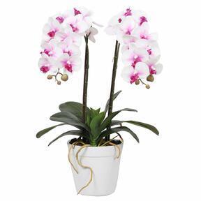 Mesterséges orchidea 43 cm