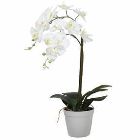 Mesterséges orchidea fehér 65 cm