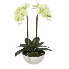 Mesterséges vajas orchidea 50 cm