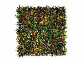 Mesterséges virágpanel Leucadendron - 50x50 cm
