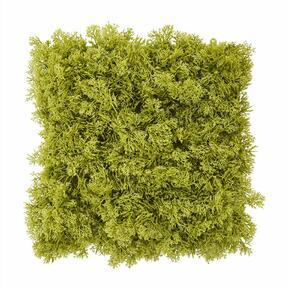 Mesterséges zöld moha panel - 25x25 cm