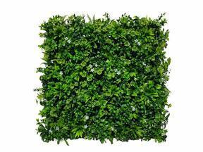 Művirág panel Stonecrop - 50x50 cm