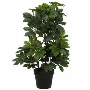 Shefler mesterséges növény 60 cm